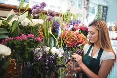 Female florist arranging flowers at her flower shop Stock Photos