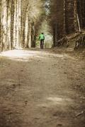 Rear view of mountain biker riding on dirt road in forest Stock Photos
