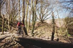 Mountain biker on footbridge by trees in forest Stock Photos