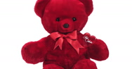 Red Teddy Bear for Saint Valentine's Day, Real Time 4K, Moving image Stock Footage