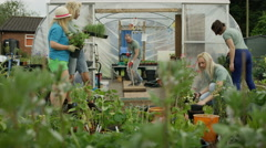 4K Cheerful team of volunteers working & fooling around in community garden Stock Footage