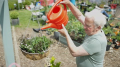 4K Senior man watering a hanging planter in community garden Stock Footage
