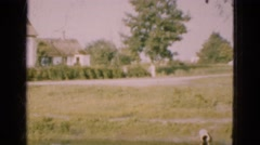 1948: ducks swimming in pond and couple looking at ship in the water DENMARK Stock Footage