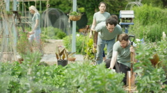 4K Volunteers working & chatting together in community allotment Stock Footage