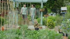 4K Volunteers working & chatting together in community garden project Stock Footage
