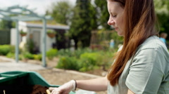 4K Woman planting seedlings in community garden Stock Footage