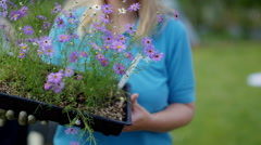 4K Portrait smiling volunteer holding tray of flowers in community garden Stock Footage