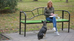 Blonde Woman in a park feeding a stray mongrel dog Stock Footage