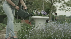 4K Unrecognizable female volunteer watering flowers at community garden project Stock Footage