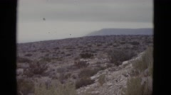 1952: view of uneven shrub landscape on an overcast day NEW ORLEANS Stock Footage