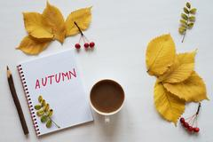 Attributes of autumn, coffee and notebook on a white board Stock Photos