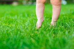 Baby feeling grass for the first time Stock Photos