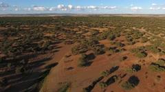 Cork oaks forest field  in Alentejo, portugal aerial shot 4k Stock Footage