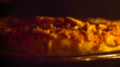 Delicious pizza in the oven Stock Footage