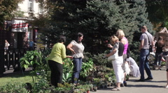 Photographer at an exhibition for sale house flowers Stock Footage