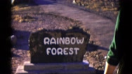 1952: forest area is seen CALIFORNIA Stock Footage
