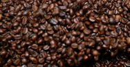 Coffee Beans Falling, Slow Motion 4K Stock Footage