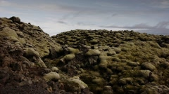 Moss Covered Eldhraun Lava Fields Stock Footage