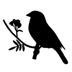High quality Silhouette bird on ash branch Stock Illustration