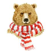 Brown bear wearing a scarf Stock Illustration