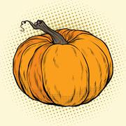 Ripe pumpkin, Thanksgiving or Halloween Stock Illustration