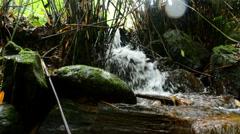 Beautiful Cascade Flowing On Mossy Rock Stock Footage