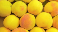 Many yellow peaches exposed in a market Stock Footage