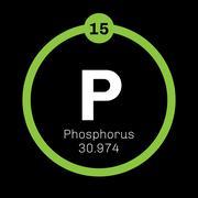 Phosphorus chemical element Stock Illustration