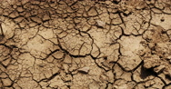 Drought In Normandy, Real Time 4K Stock Footage