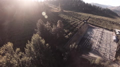 Aerial: Fruit Harvest in Produciton Flyover With Crew Working Stock Footage