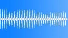 Birds Specific Breeds Northern GoshawkHigh Pitched CallsConstant Rhythmic Chirp Sound Effect