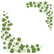 Frame with vine leaves Stock Illustration