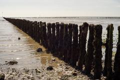 Diagonal composition of wooden sea posts acting as a sea barrier at Cudmore g Stock Photos