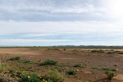 Empty Space with blue clouds in Tankwa Karoo Stock Photos