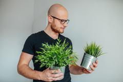 Young man is holding green seedlings and looking at them. Stock Photos