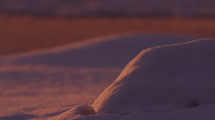 Rack focus across snow covered boulders at sunset close Stock Footage