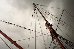 Ship rigging on a yacht with a flock of starlings sitting on the wooden masts Stock Photos
