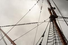 Ship rigging on a yacht with starling sitting on the wooden masts with a grey Stock Photos