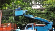 Electrical workers on telehandler with bucket Stock Footage