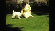 1968: a dog is seen being pet SEATTLE, WASHINGTON Stock Footage