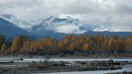 Fall Colors Alaska Style Stock Footage