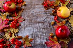 Abundant harvest concept with apples, acorns, berries and fall leaves Stock Photos