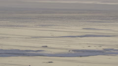 Snow blowing across shiny ice in arctic Stock Footage