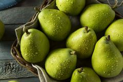 Raw Green Organic Danjou Pears Stock Photos
