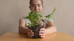 Woman with a basil sprout Stock Footage