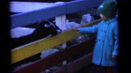 1963: a child is seen near a goat CAMDEN, NEW JERSEY Stock Footage