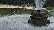 Water spraying from a fountain in a pond, in slow motion Stock Footage