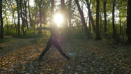 Young woman exercising yoga in the autumn forest. Stock Footage