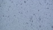 Snow storm at twilight. Abstract background Stock Footage