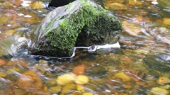 Water rushing around a rock in a pebble filled stream Arkistovideo